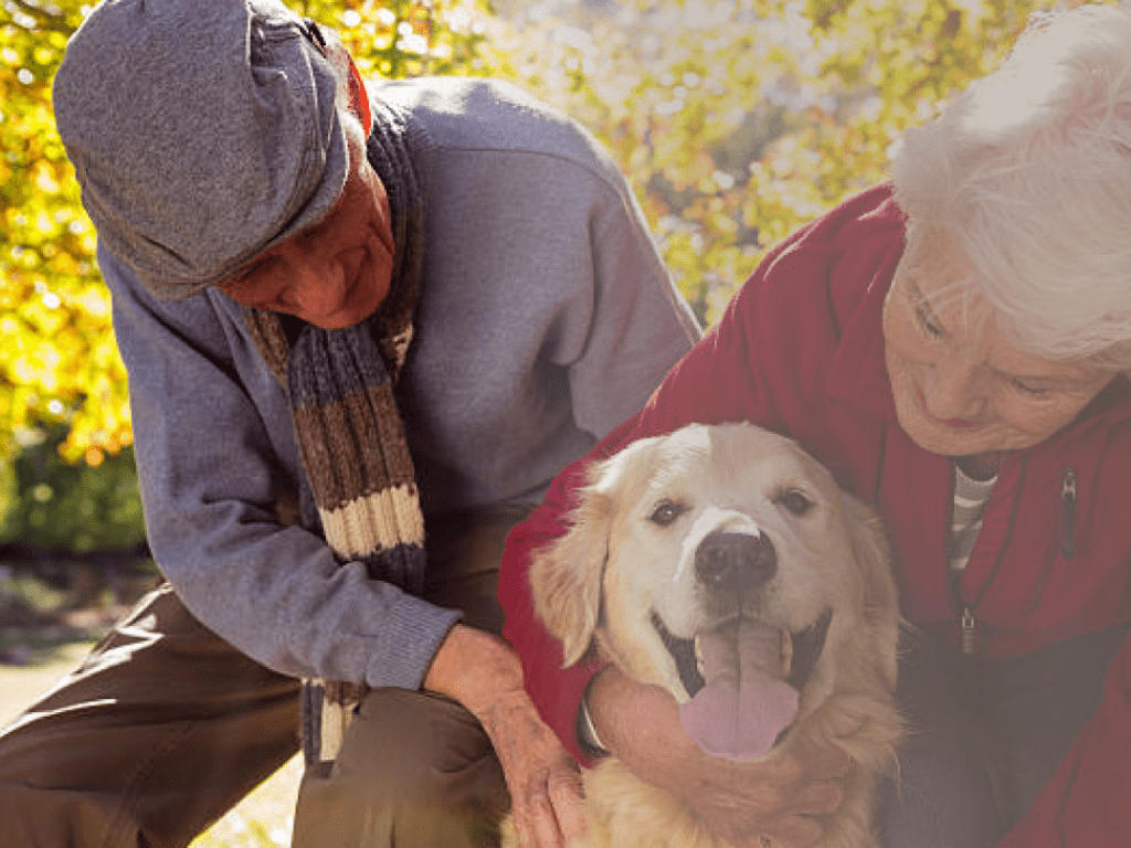 Elderly Melburnian man and woman with a dog.